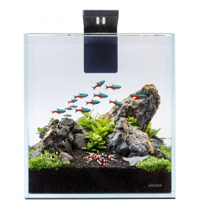 aqualighter-nano-set-10l