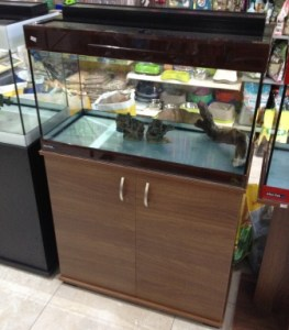 bluefish-colourline-economy-brown-80x35x50-cabinet