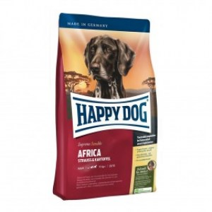 happy-dog-africa