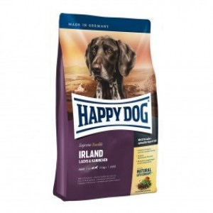 happy-dog-irland8