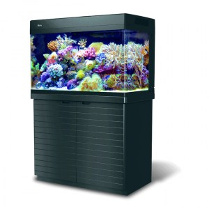 images/stories/virtuemart/product/red-sea-max-250 Black