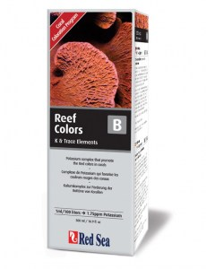 images/stories/virtuemart/product/red_sea_reef-colors-b