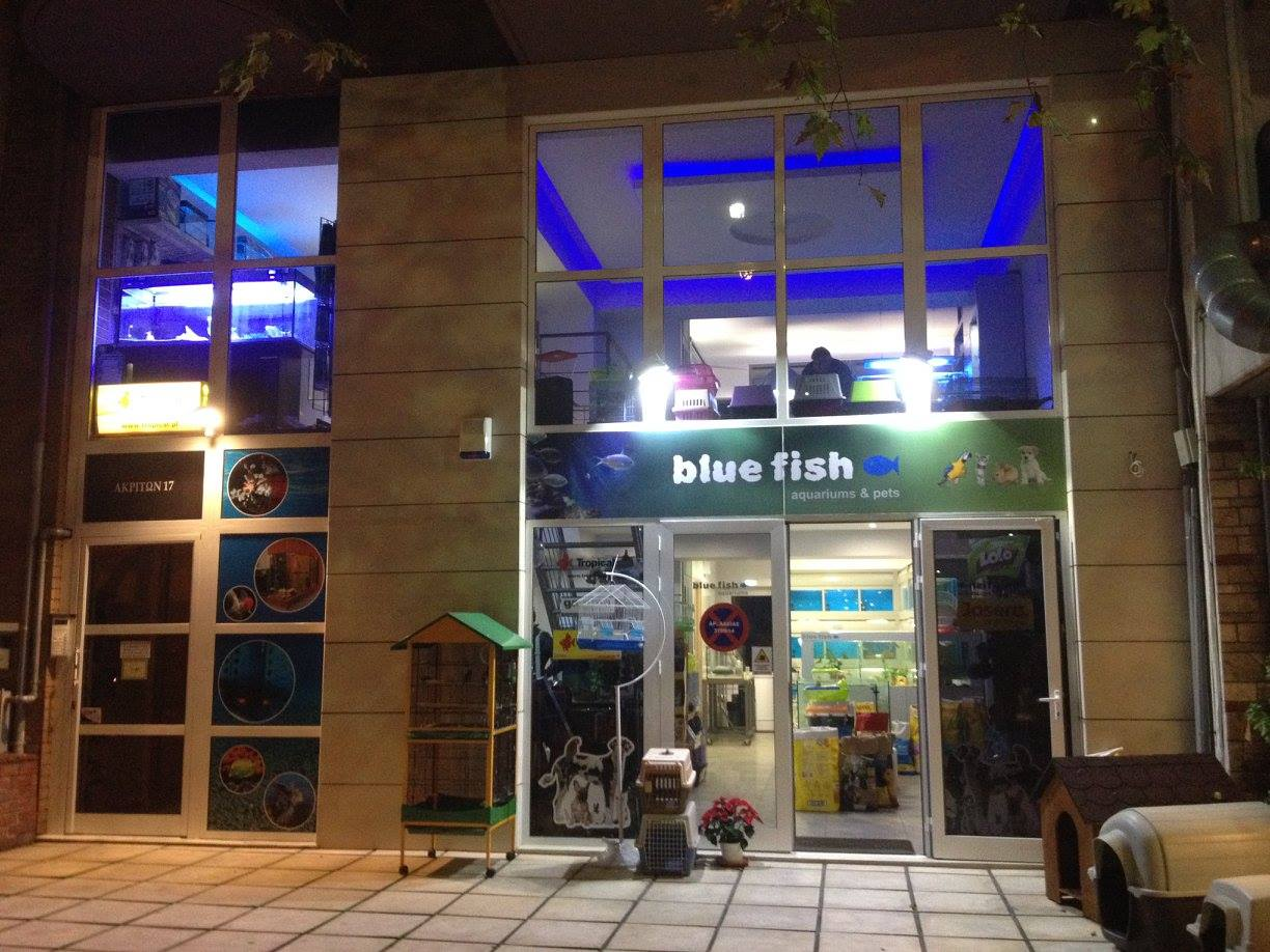 2a5d5c31edc Η εταιρία - BlueFish aquariums & pets